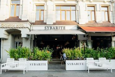Sybarite